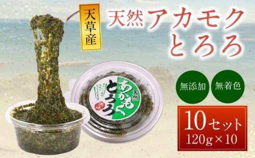 天草産 天然アカモク とろろ 120g×10食