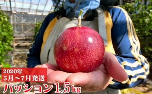【2020年発送】パッションフルーツ1.5kg