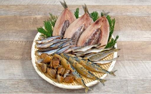 地元産の魚介類をたっぷり詰め合わせにしました!