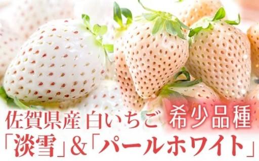 【希少品種セット】佐賀県産の白いちごを食べ比べ♪