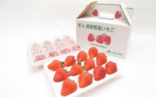 岐阜県のオリジナル品種「美濃娘」をどうぞ!!