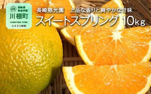 長崎県産 スイートスプリング 10kg ミカン