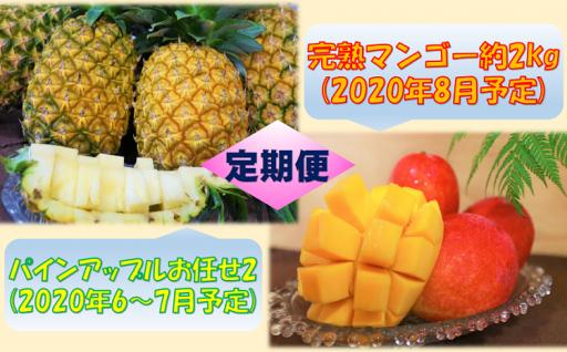 【定期便】パインアップルお任せ2&完熟マンゴー