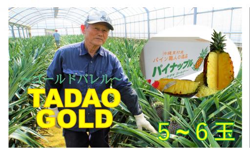 【TADAO GOLD】5~6玉