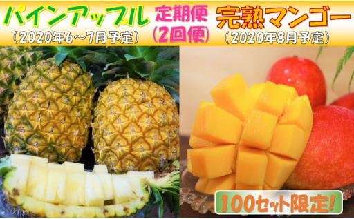 【定期便】パインアップルお任せ1&完熟マンゴー