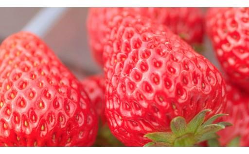 三木市の果物をご賞味ください!
