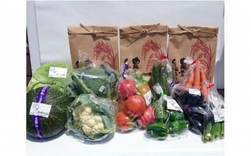 能登・美味のコラボ 「野菜と米」