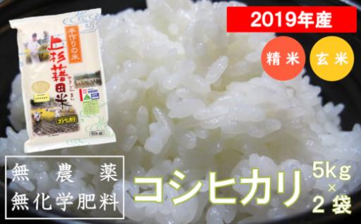《2019年産》無農薬無化学肥料栽培コシヒカリ