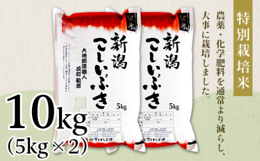 新潟県長岡産こしいぶき10kgが登場!