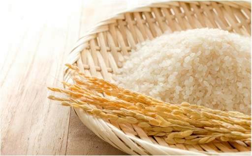 特別栽培米『榮米』ギフトセット『花』