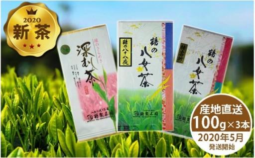 八女茶の新茶予約、始めました(^_-)-☆