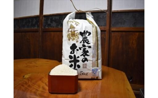 【6ヶ月定期便】佐川さんちのこしひかり米 5Kg