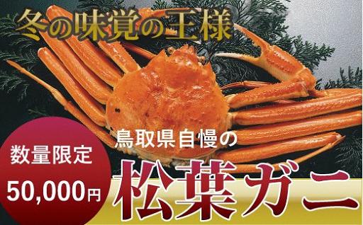 【締切間近】鳥取の冬の味覚の王者 松葉ガニ(大)