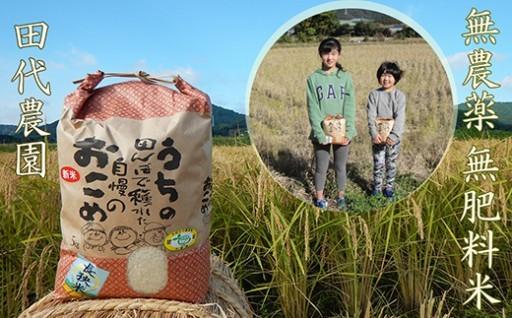 農家さんがお孫さんの為に作った無農薬無肥料米