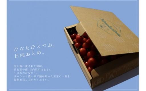ぎゅうっと濃い味で摘み取った至宝のミニトマト