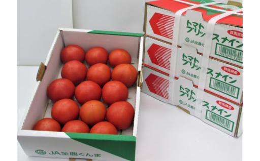 群馬県太田市のブリックスナイントマト