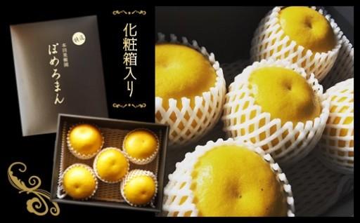 高級果実 「特選」ぽめろまん(化粧箱入)