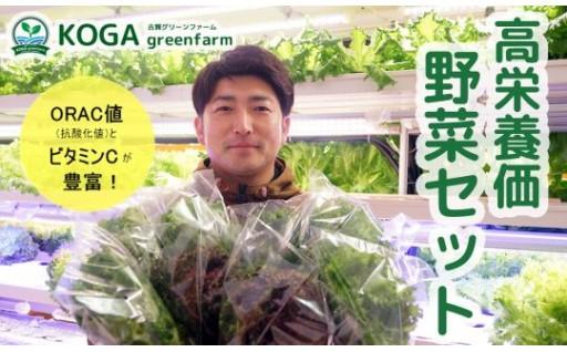 高栄養価野菜セット