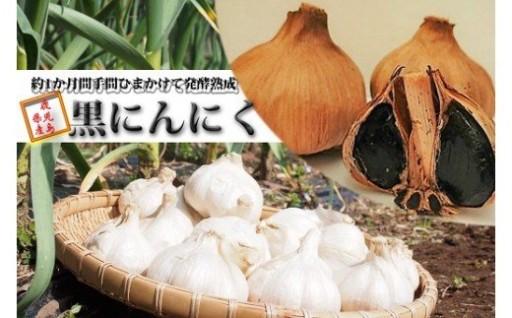 鹿児島県産農薬不使用黒にんにく 約120g