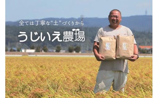 日本農業賞・特別賞受賞!氏家農場がつくるお米
