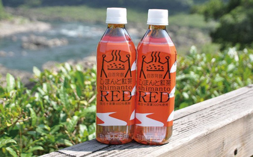 自家発酵の国産紅茶 しまんと紅茶RED