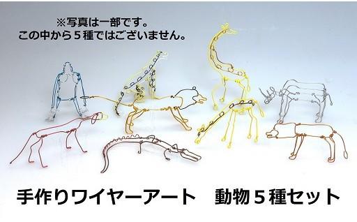 カラフルなワイヤーが動物や恐竜に変化します!