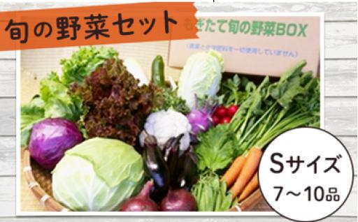 今が食べ時♪ 旬の野菜セットSサイズ