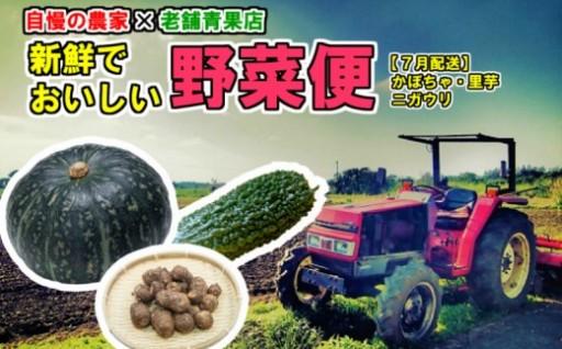自慢の農家×老舗青果店 新鮮な野菜便【7月発送】