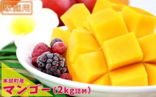 【2020年夏発送】本部町産マンゴー 2kg詰め