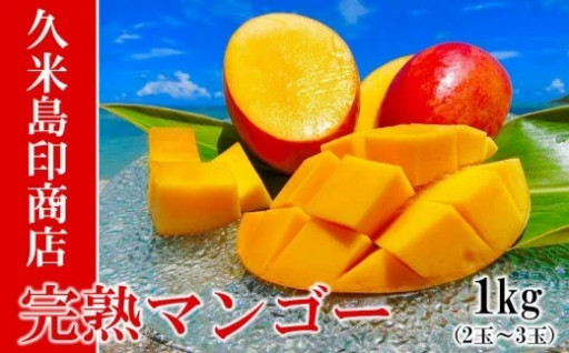2020年発送 久米島印商店 完熟マンゴー1kg