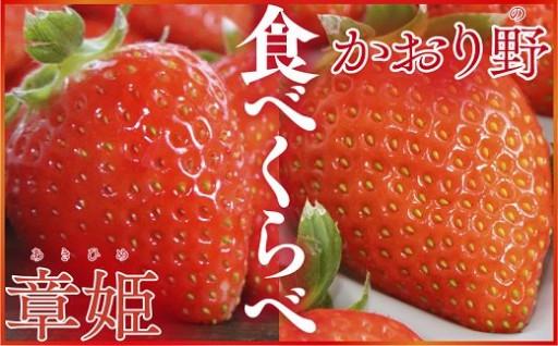 坪井農園のいちご2箱セット(章姫・かおり野)