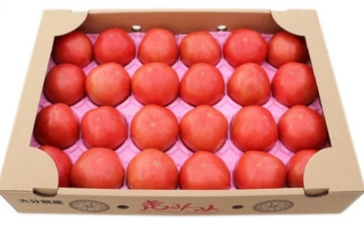 「走るトマト」の大玉トマト富丸ムーチョ 4㎏