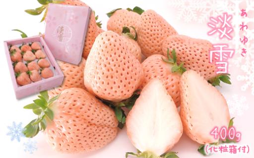 白いちご「淡雪」(大玉限定400g)《化粧箱付》