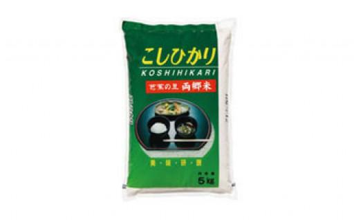 おかわりしたくなる美味しい大田原市産のお米!
