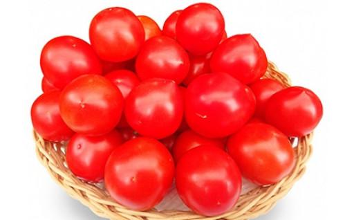 フルーツミディトマト中玉1.5kg