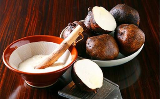 大和万葉の里「山の芋」 約2.5kg