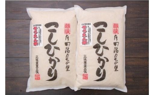 【受付再開】そうえん米コシヒカリ5㎏×2袋