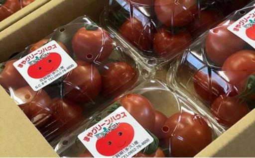 真っ赤なトマトを500g×4パックお届け!