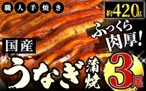 うなぎ蒲焼専門店「柳屋」国産うなぎ蒲焼 3尾