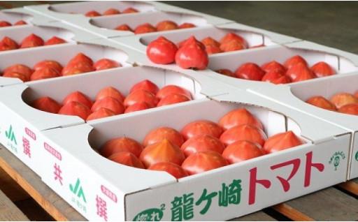 希少価値の高い茨城県銘柄産地指定「龍ケ崎トマト」