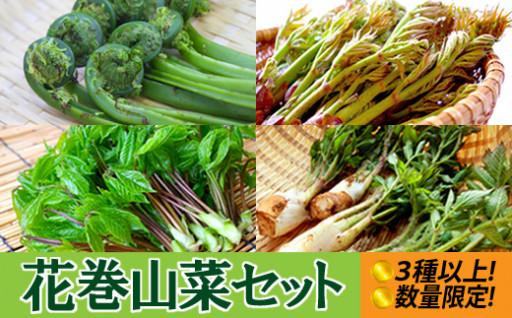 <数量限定>栄養豊富!花巻の旬な山菜をお届け!