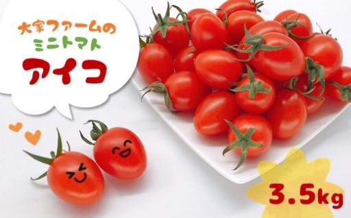 大家ファームのミニトマト アイコ 3.5kg