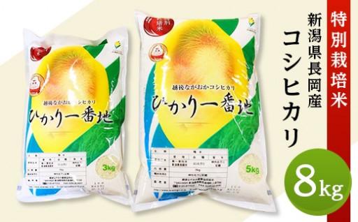 新潟県産コシヒカリ8kg(特別栽培米)が新登場!