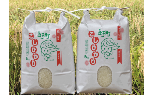 令和元年度 白子産コシヒカリ10kg