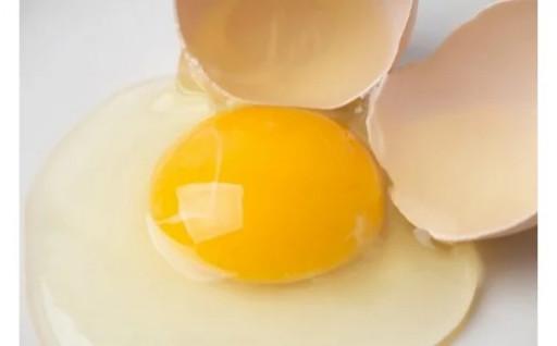 【6ヶ月定期便】田中鶏卵の産みたて卵(60個)