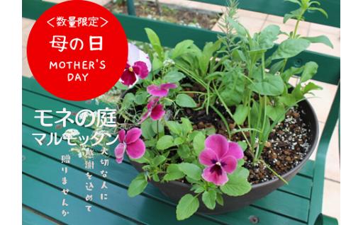 「母の日」対応。人気のモネの庭の花々。