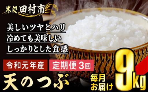 【3回定期便】令和元年産天のつぶ 9kg