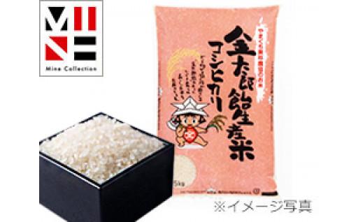 金太郎飴生産米コシヒカリ