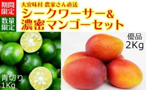 シークワーサー1Kg&濃密マンゴー《2Kg》
