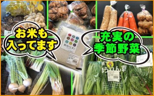 【数量限定】旬野菜がセットで届く!お米も一緒に!